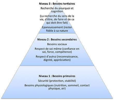 piramide-besoins